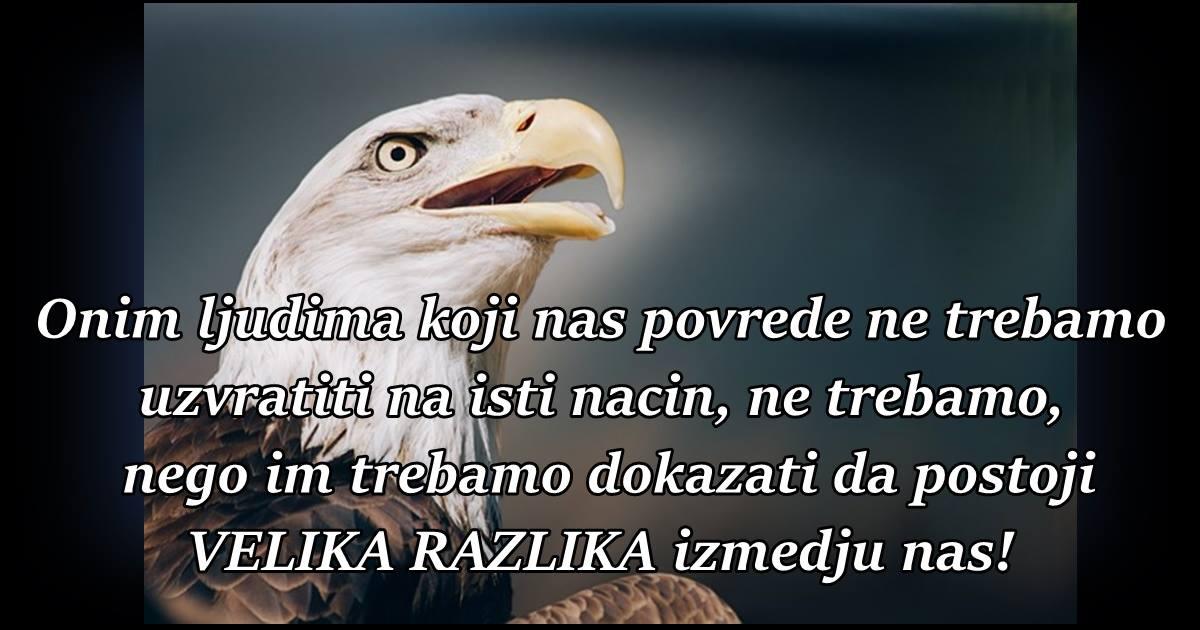 Onim ljudima koji nas povrede ne trebamo uzvratiti na isti nacin, ne trebamo, nego im trebamo dokazati da postoji VELIKA RAZLIKA izmedju nas!