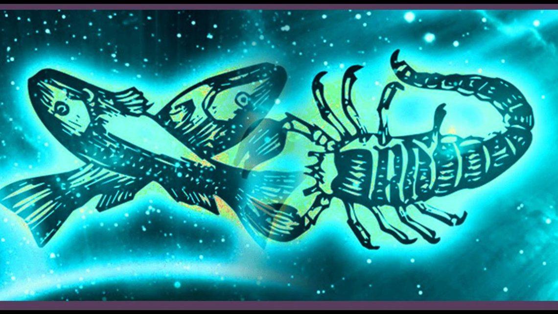 riba i skorpija
