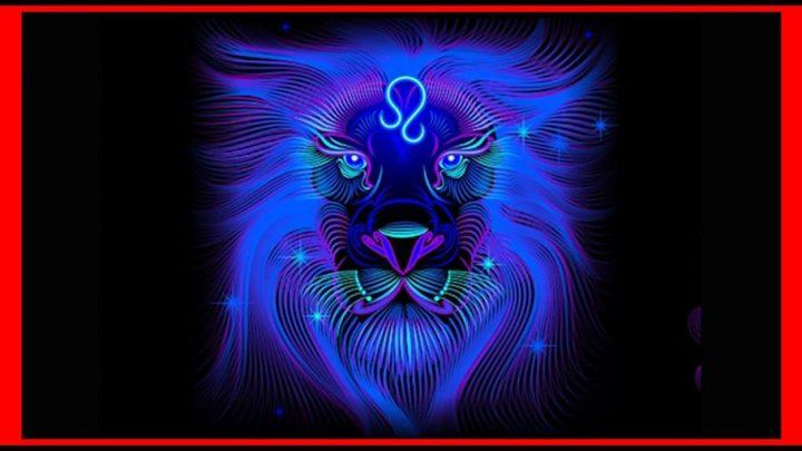 Lav: Nikoga ne prati i nikoga ne slusa – On cini samo ono sto zeli!