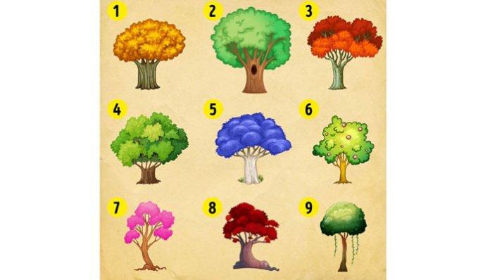 Izaberite drvo za svoj vrt i saznajte kakve vas promjene očekuju u 2020. godini!