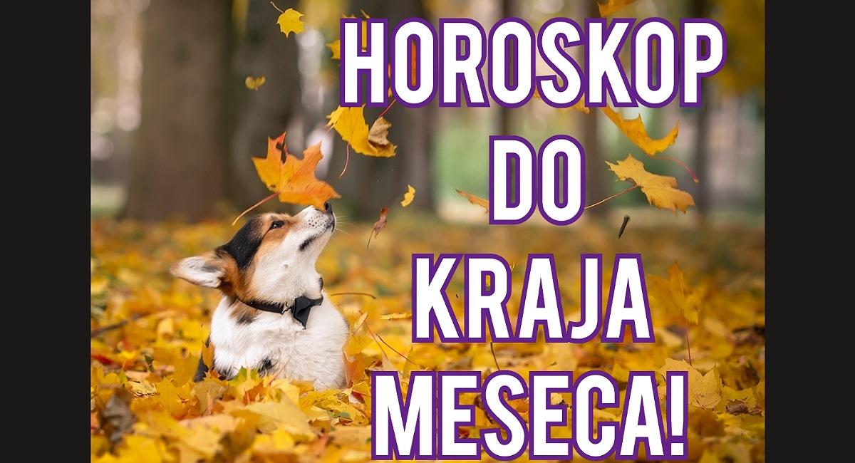 Horoskop za sve znake do kraja oktobra.